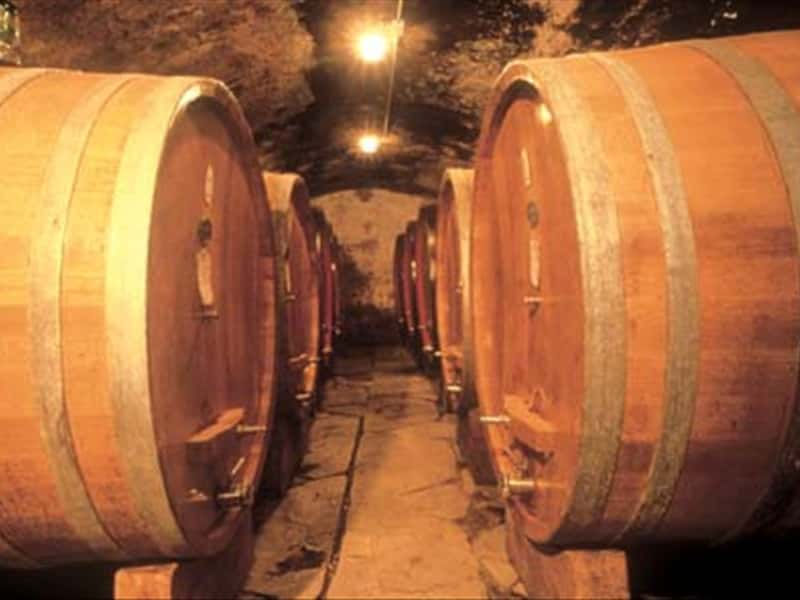 Volpaia Wines Tuscany Holidays Grappa Wines And Local